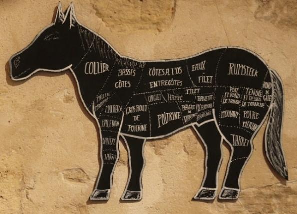 zgst-horsemeat