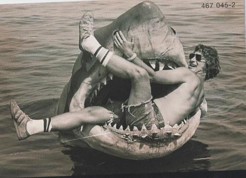 Steven-Spielberg-in-Jaws